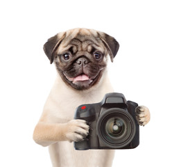 Dog photographer taking pictures. isolated on white background