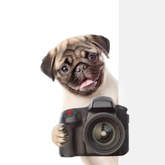 Dog taking a picture behind a placard. isolated on white background
