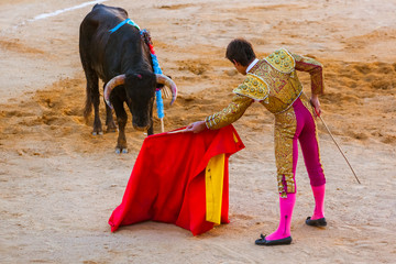 Matador and bull in tourada bullfight - Moita Lisbon Portugal