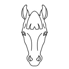 Vector line art horse head icon farm animzl portrait