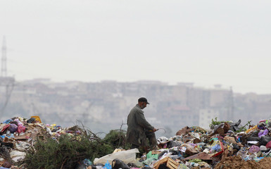 A man collects recyclable items in Ouled Fayet's municipal garbage dump, west of Algiers