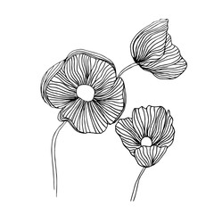 Black and white ink hand drawn wild flowers in vector