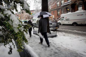 Ice and snow covers a tree as commuters make their way through the snow during the morning rush in the Park Slope section of Brooklyn, New York