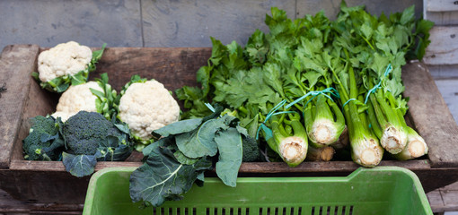 Broccoli, celery and cauliflowers