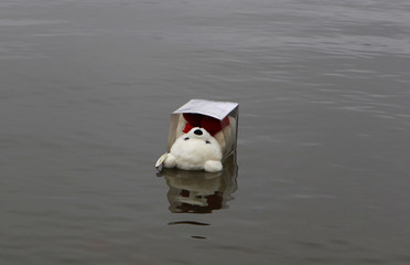 A child's teddy bear, left by a mourner, floats near a boat launch into the Hudson in Newburgh