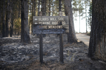 A sign burned by the King Fire is seen in White Meadows, northeast of Sacramento, California