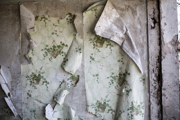 Peeling wallpaper is seen in a house which was damaged by fighting in the town of Vuhlehirsk