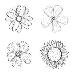 Set of outlines of different flowers, Vector illustration