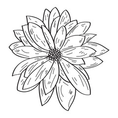Isolated outline of a flower, Vector illustration