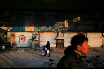 A woman travelling home for the Spring Festival pushes her luggage at Picun village, home to thousands of migrant workers in the suburbs of Beijing