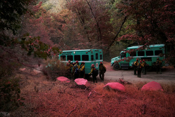 Firefighters with the Kings River Hotshots walk through trees covered in pink fire retardant after building a fire line to protect homes in the Deer Lodge Park area during the Pilot Fire in San Bernardino county near Lake Arrowhead, California