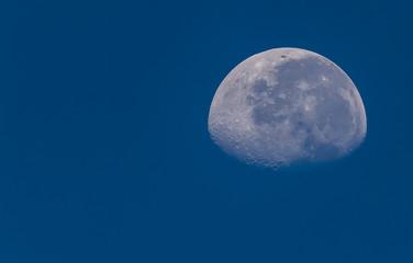 Half moonlight