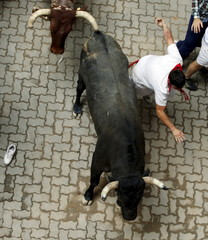 A runner loses his balance next to a Jose Escolar fighting bull during the fifth running of the bulls of the San Fermin festival in Pamplona