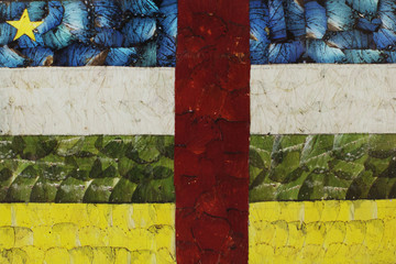 A finished work of butterfly wing art showing the Central African Republic flag is seen in Bangui