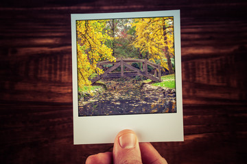 Hand holding polaroid photograph of autumn scene in Australian garden - beautiful wooden bridge over creek with copy space. Travel memories of good old times