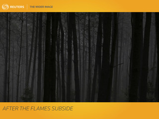The Wider Image: After the flames subside