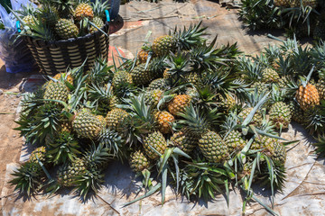 Heap of fresh pineapple fruits for sale in Thailand. The scientific binomial name is Ananas comosus.