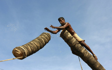 Anandan, 56, pushes a part of a coconut tree after cutting it along a main road in the southern Indian city of Kochi