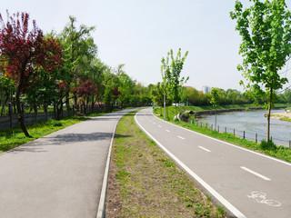 Dedicated bike path adjacent to pedestrian walkway