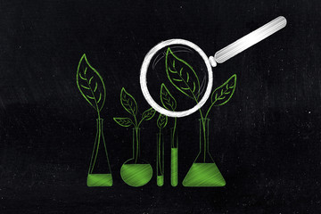 leaves growing inside lab bottles instead of chemical solutions with magnifying glass analysing them