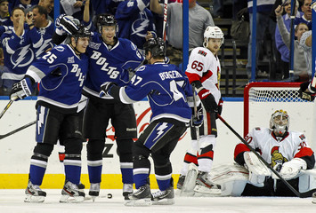 Tampa Bay Lightning's Matt Carle celebrates his goal with teammates at their NHL hockey game in Tampa, Florida