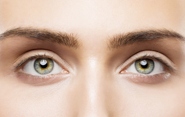 Woman Eyes Close Up, Natural Makeup, Young Girl Beauty Face, Eye Eyebrow Closeup