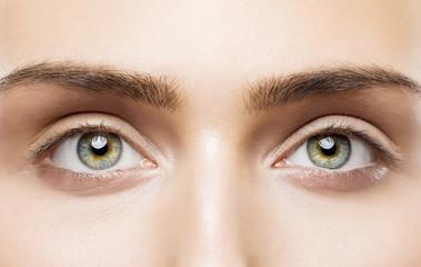 Woman Eyes Close Up, Natural Makeup, Young Girl Beauty Face, Eye Eyebrow Closeup