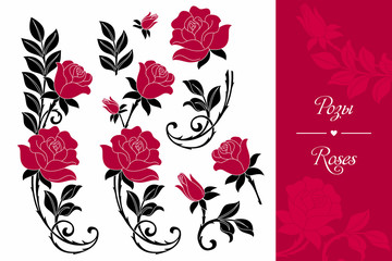 Розы. Узор.