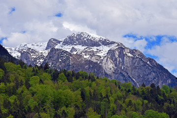 Snow capped mountain on Alps. Forest on foreground. View from Berchtesgaden, Bavaria, Germany. Horizontal image.