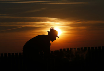 Hungarian herdsman Janos Bana, 62, cooks as he guards his cattle at the Great Hungarian Plain in Hortobagy