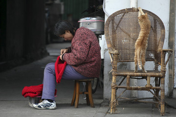 A woman knits outside her house as her cat plays next to her in an old part of Shanghai