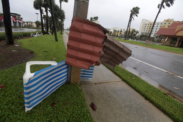 Metal roofing material is wrapped around a light pole and a palm tree after the eye of Hurricane Matthew passed Daytona Beach