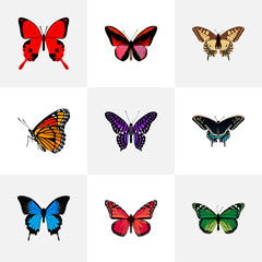 Realistic Polyommatus Icarus, Tiger Swallowtail, Callicore Cynosura And Other Vector Elements. Set Of Butterfly Realistic Symbols Also Includes Violet, Red, Green Objects.