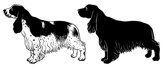 Cocker Spaniel set - outline and silhouette vector
