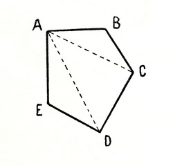 A polygon's diagonals