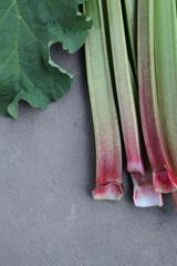 Rhubarb Stalks 1
