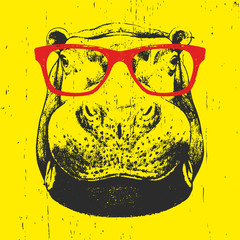 Portrait of Hippo with glasses. Hand drawn illustration. T-shirt design. Vector