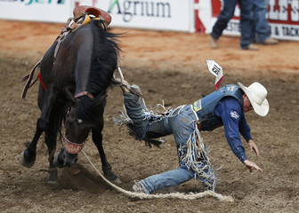 Wright of Milford, Utah, gets his boot caught in stirrup on horse Crazy Day Job in saddle bronc event during day 3 of Calgary Stampede rodeo in Calgary