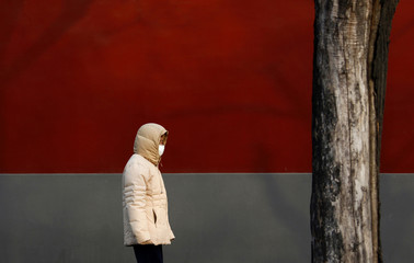 A man wears a face mask as he walk past a wall surrounding the Forbidden City on a cold winters day in central Beijing