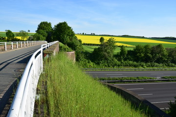 Autobahnbrücke Escher vor blühenden Rapsfeldern