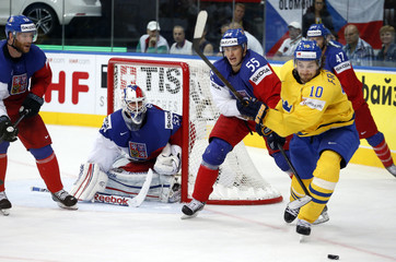 Goalie Salak of the Czech Republic looks on as team mate Sevc battles for the puck with Sweden's Fransson during the third period of their men's ice hockey World Championship bronze medal game at Minsk Arena in Minsk