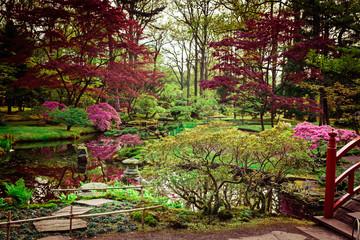 Beautiful Japanese garden in spring. Den Haag, Holland