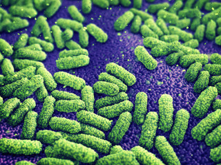 Gastroenteritis infection caused by Escherichia coli bacteria , Food poisoning disease