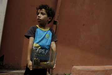 A boy holds a terrarium with his pet turtles while a health worker fumigates his home to help control the spread of the mosquito-borne Zika virus in La Carpio a slum near of San Jose