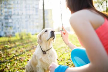 Girl training dog at park