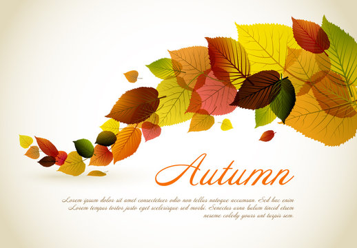 Autumn Leaves Card Layout 3