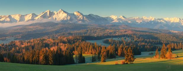 Obraz Summer morning in mountains - fototapety do salonu