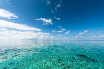 海 モルディブ 遠浅 サンゴ礁
