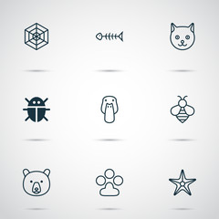 Animal Icons Set. Collection Of Starfish, Kitten, Cobweb And Other Elements. Also Includes Symbols Such As Cobweb, Bee, Beetle.