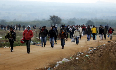 Migrants walk towards a village after entering from Macedonia by foot in Miratovac